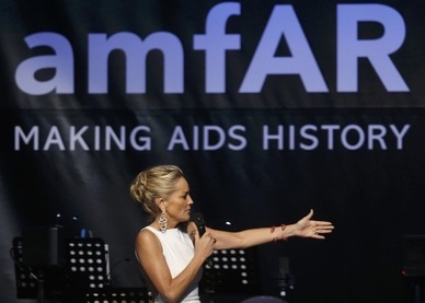 amfAR, the Foundation for AIDS research, Sharon Stone, the end of AIDS, Charles King, Mark Harrington, Obama